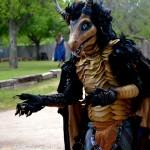 scarborough fair dragon